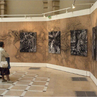 Emergences (2009). Installation, Mural In Situ, Photographs, 900 x 300cm.  Latitudes, Paris. © David Gumbs