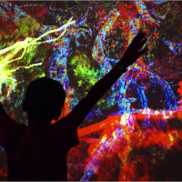 Soleil Magma (2013). Real-time interactive video. BIAC, Martinique. © David Gumbs